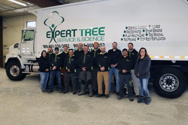 The Expert Tree Service Team